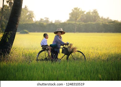 Happy moments with grandmother and grandson are cycling in the rice paddy countryside at Suphanburi Province in Thailand.