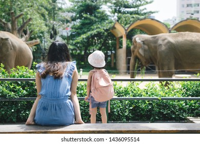 Happy mother and daughter watching and feeding elephants in zoo.