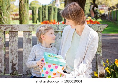 happy mother and her son holding gift and celebrating mother's day in the park