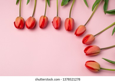 Happy Mothers Day. Top view of red tulips on ligth pink background. Beautiful woman day card. Flat lay.