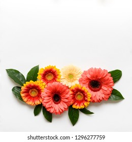 Happy Mother's Day, Women's Day, Valentine's Day or Birthday Living Coral Pantone Color Background. Coral flat lay greeting card template with beautiful gerbera flowers.