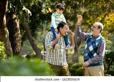 Happy multi generation Indian family at park outdoor