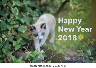 'Happy New Year 2018' on a nature background