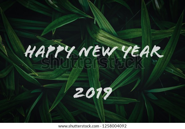 Happy New Year Nature 30