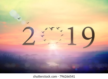 Happy New Year 2019 concept