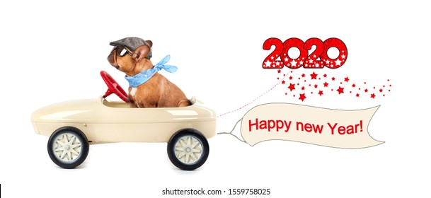 happy new year 2020, cute dog in pedal car with greetings for new year