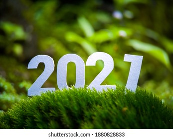 Happy New Year 2021. Green theme in the morning for new hope in 2021 and good bye 2020. 2021 put on the green grasses or mosses.