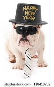 Happy New Year Bulldog wearing Sunglasses, hat and Tie
