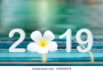 Happy new year greeting card 2019. Number 2019 text with white Plumeria flower on ceramic tile border of swimming pool over bokeh blur water background.