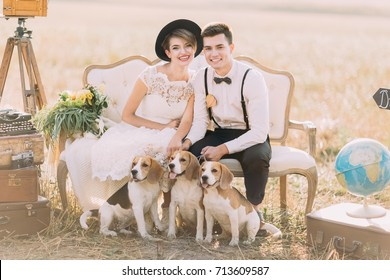 Happy newlyweds are sitting with the three little dogs on the old-fashioned sofa surrouned by the vintage suitcases, flowers and globe. The sunny field composition.