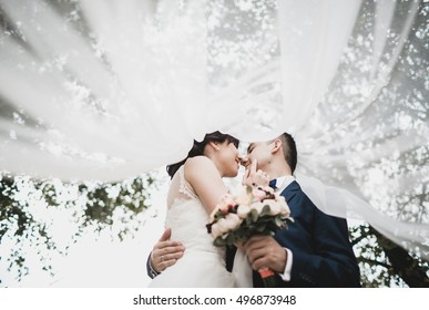 Happy newlyweds under the bridal veil