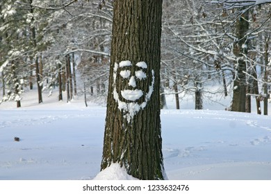 A happy oak tree with a bearded face made of snow stands before a snowy hill covered in trees in winter