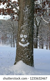 A happy oak tree with a face made of snow stands before a snowy hill covered in trees in winter