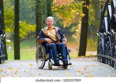 happy old man on wheelchair in the colorful autumnal park - outdoor scene