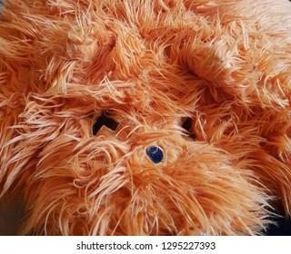 Happy orange toy dog