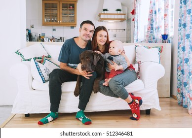 Happy parents with baby and dog on the couch at home interior. Lifestyle, family and togetherness concept. Portrait a young playful family at home.