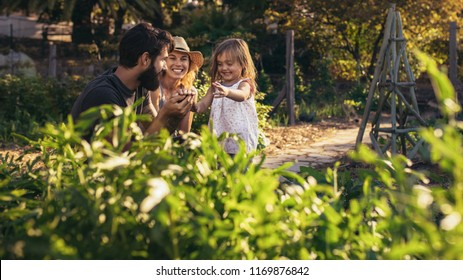 Happy parents playing with their daughter at farm. Beautiful farmer family playing in their allotment.