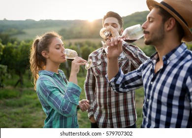 Happy people tasting wine in vineyard