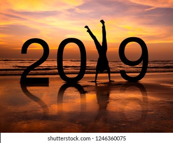 Happy person silhouette in New Year 2019