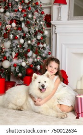 Happy pretty little girl with a big white husk dog near New Year tree with presents
