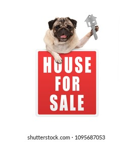 happy pug puppy dog hanging with paws on red house for sale sign, holding up house key, isolated on white background