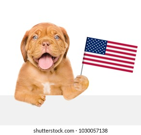 Happy puppy holding American flag in paw above white banner. isolated on white background