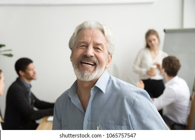 Happy senior businessman laughing looking at camera in office, cheerful team leader posing with employees at background, aged teacher, old gray-haired boss or professional mentor head shot portrait