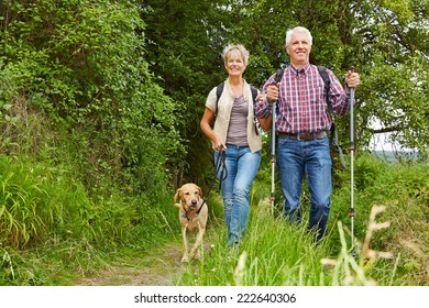 Happy senior couple doing Nordic Walking with dog in a forest