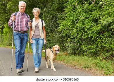 Happy senior couple hiking with labrador retriever dog in summer