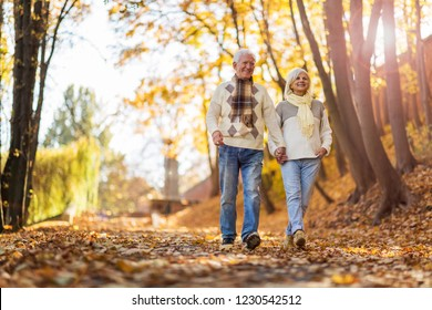 Happy senior couple holding hands and walking in park