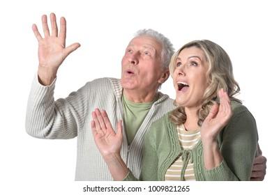 happy  senior couple posing