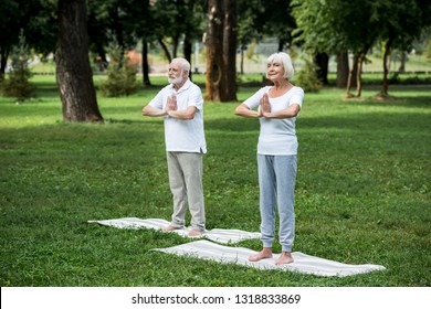 happy senior couple practicing meditation sukhasana standing poses with folded hands