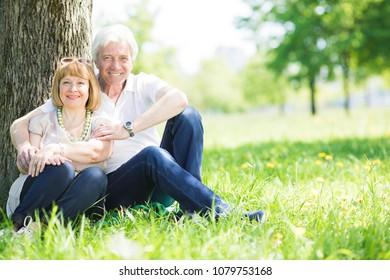 Happy senior couple sitting on grass under a tree in park at sunny summer day