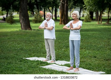 happy senior couple standing on yoga mats in meditation sukhasana standing poses with folded hands