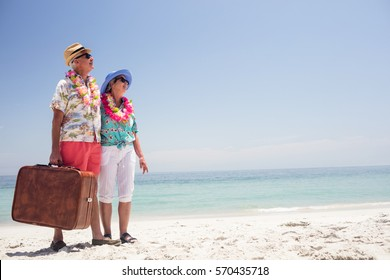 Happy senior couple wearing a garland and holding suitcase on the beach
