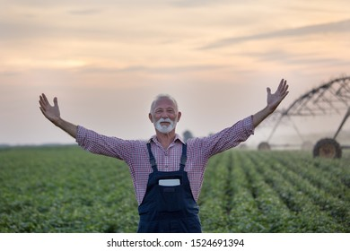 Happy senior farmer standing with raised arms in front of field with irrigation system