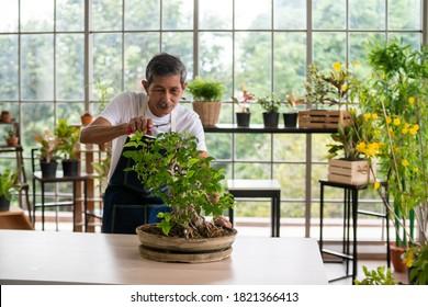 Herzlichen Glückwunsch an den Gärtner, der sich um seine Pflanzen im Gewächshaus kümmert.