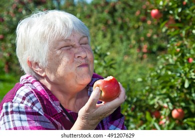 A happy senior woman eats an apple right off the tree.