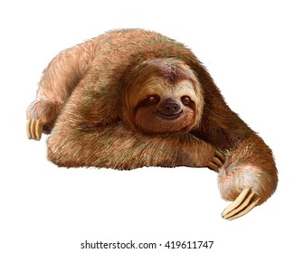 Happy sloth resting on a clean white background