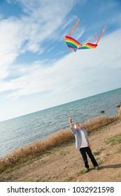 happy small boy with kite near the sea