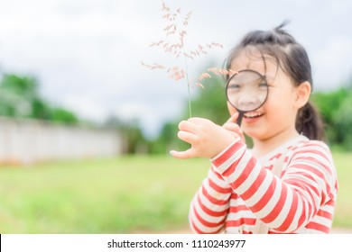 Happy smiley Little asian girl looking through a magnifying glass on grass in nature park.4 years old kindergarten girl.child development concept.