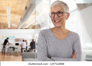 Happy smiling business woman in an office. Teamwork , success concept