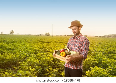 Happy smiling caucasian forty years old farmer in a hat standing proud in front of field landscape holding wooden box with fresh vegetables - agriculture.