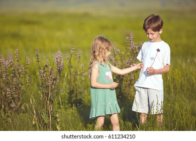happy smiling children in the field at sunny summer morning. Brother and sister Collects a bouquet of wildflowers. The family travels, the children happily ran around the field