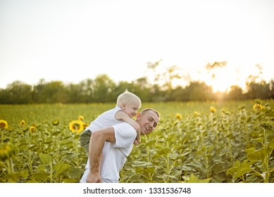 Happy smiling father with son on his back walks on the green field of blooming sunflowers at sunset.