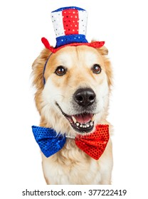 Happy and smiling Golden Retriever mixed breed dog wearing a red, white and blue patriotic hat and bow tie