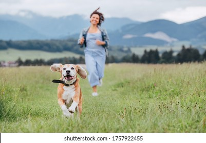 Happy smiling running beagle dog portrait with tongue out and owner female jogging by the mounting meadow grass path. Walking in nature with pets, happy healthy active people lifestyle concept image.
