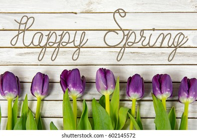 happy spring sign in rope design with purple tulips arranged in a row on whitewashed wood