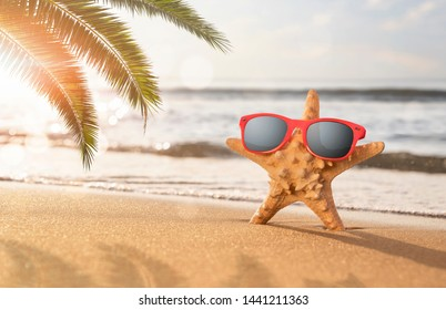Happy starfish enjoy the sun at the tropical beach with copy space. Summer holidays concept