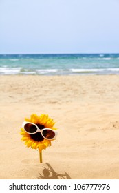 happy sunflower with sunglasses on beach